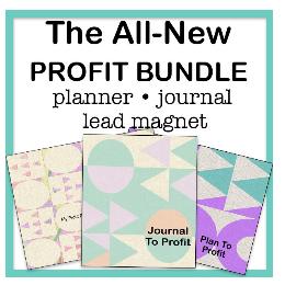 plan to profit PLR bundle