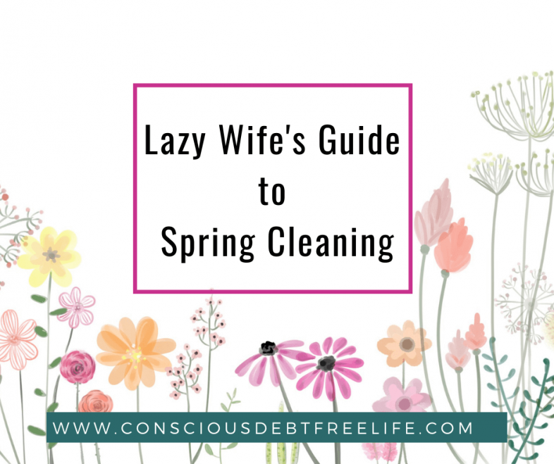 Cleaning Article